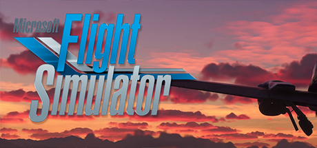 Microsoft Flight Simulator 2020 CPY